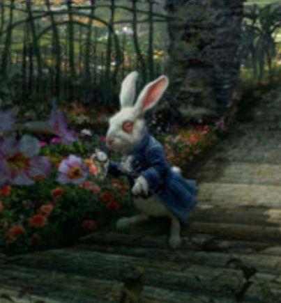 Alice In Wonderland Ra...