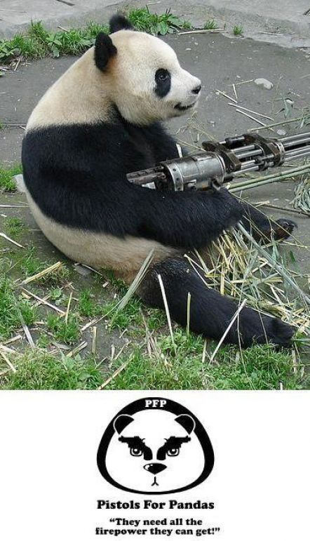 Funny Animals with Guns