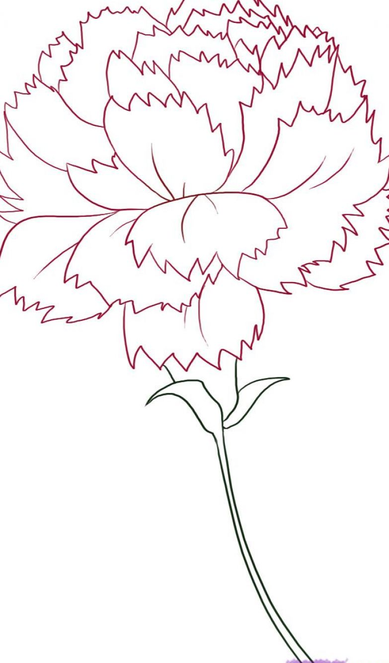 how to draw a flower step by step for beginners