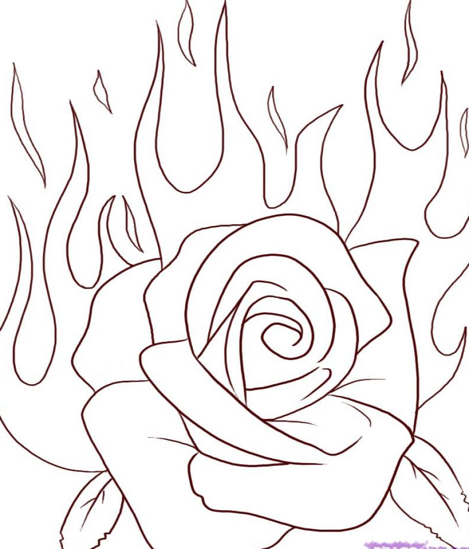 How to draw a rose for beginners for Easy to draw roses for beginners